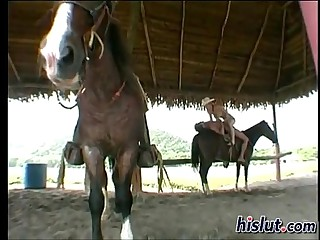 Fucking overhead Horse
